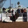 Caleb Smith, from Maricopa AZ