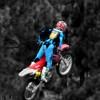 Luke Reardon Facebook, Twitter & MySpace on PeekYou