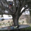 Jordan Patch Facebook, Twitter & MySpace on PeekYou