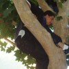 Johnny Chavez, from Costa Mesa CA