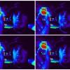 Paul Tovar Facebook, Twitter & MySpace on PeekYou