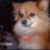 Austin Barton Facebook, Twitter & MySpace on PeekYou