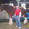 David Serpas Facebook, Twitter & MySpace on PeekYou