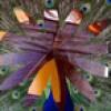 Donna Anastassiades Facebook, Twitter & MySpace on PeekYou