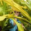 Mella Lahina Facebook, Twitter & MySpace on PeekYou