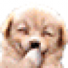 Jong Ko Facebook, Twitter & MySpace on PeekYou