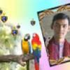 Dinesh Sorathiya Facebook, Twitter & MySpace on PeekYou