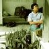 Iwan Kurniawan Facebook, Twitter & MySpace on PeekYou