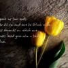 Mahesh Patel Facebook, Twitter & MySpace on PeekYou