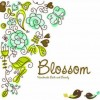 Blossom Product Facebook, Twitter & MySpace on PeekYou