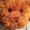 Jef Bear Facebook, Twitter & MySpace on PeekYou