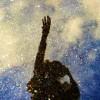 Andrea Ivonne Facebook, Twitter & MySpace on PeekYou