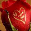 Nilesh Bhai Facebook, Twitter & MySpace on PeekYou