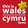 This Wales Facebook, Twitter & MySpace on PeekYou