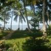 Green Kerala Facebook, Twitter & MySpace on PeekYou