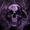 Scott Tasker Facebook, Twitter & MySpace on PeekYou