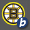 Boston Bruins, from Boston MA