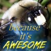 James Maasdorp Facebook, Twitter & MySpace on PeekYou