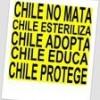Ana Valencia Facebook, Twitter & MySpace on PeekYou