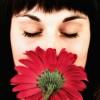Judy Merle Facebook, Twitter & MySpace on PeekYou