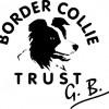 Border Trust Facebook, Twitter & MySpace on PeekYou