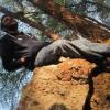 Dipen Makwana Facebook, Twitter & MySpace on PeekYou