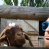 Matthew Ainsworth Facebook, Twitter & MySpace on PeekYou