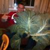 Matty Gibson Facebook, Twitter & MySpace on PeekYou