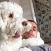Jamie Brookes Facebook, Twitter & MySpace on PeekYou