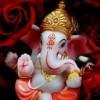 Samir Diwana Facebook, Twitter & MySpace on PeekYou
