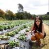 Lisandra Gunawan Facebook, Twitter & MySpace on PeekYou