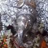 Ashish Dave, from Ahmadabad