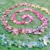 Green Aspirations Facebook, Twitter & MySpace on PeekYou