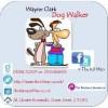 Wayne Clark Facebook, Twitter & MySpace on PeekYou
