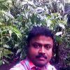 Saji Ottakkal Facebook, Twitter & MySpace on PeekYou