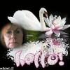 Carol Scott Facebook, Twitter & MySpace on PeekYou