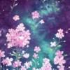 Sara Ahmed Facebook, Twitter & MySpace on PeekYou