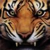Siva Sankar Facebook, Twitter & MySpace on PeekYou