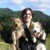 Dan Phillips Facebook, Twitter & MySpace on PeekYou