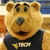 Golden Bears Facebook, Twitter & MySpace on PeekYou